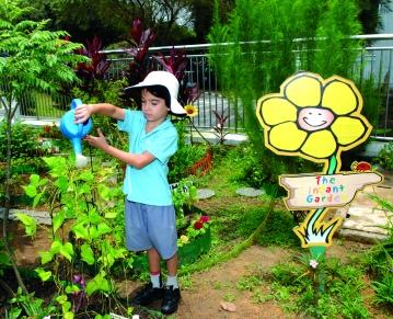 infant_garden