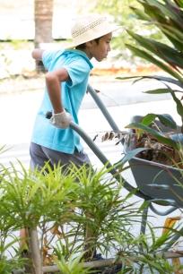 Urban_Gardeners_College_Service_-_JS_-_East-15