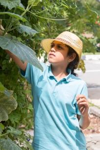 Urban_Gardeners_College_Service_-_JS_-_East-2